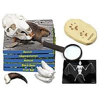 Научный набор Млекопитающие (5 видов) от Lakeshore